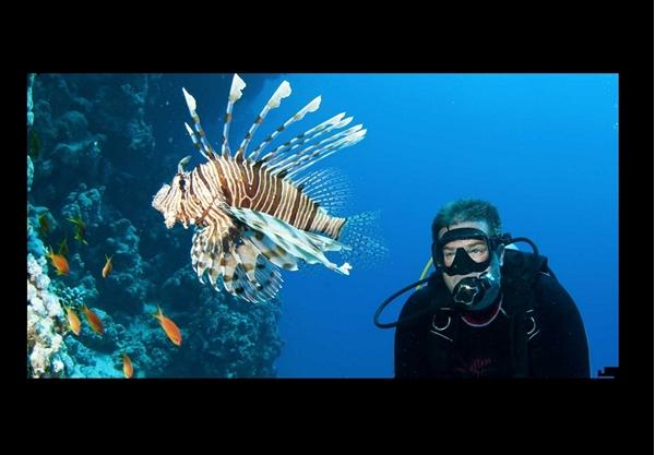 Εικόνα για την κατηγορία υποβρύχιοι