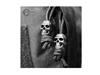 Picture of Skull Cord Stopper Μαύρο